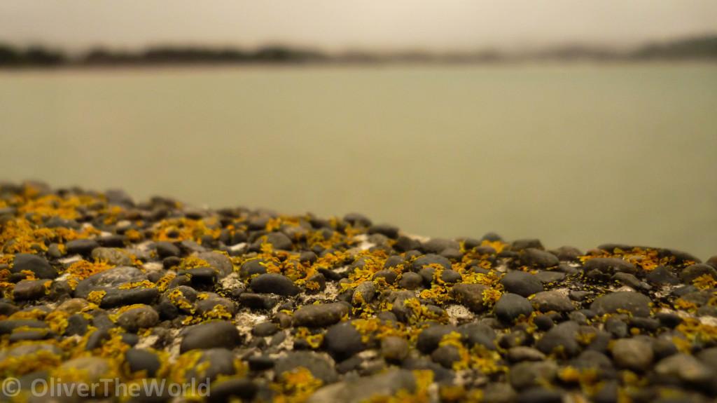Mossy stone jetty